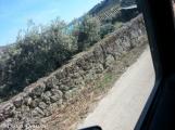 Quinta do Vale Meão JeepTour